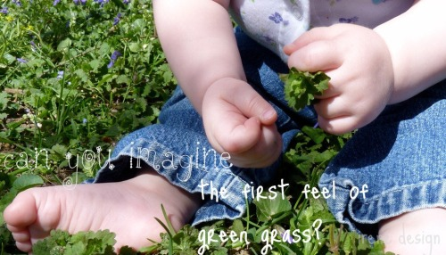 baby hands exploring grass